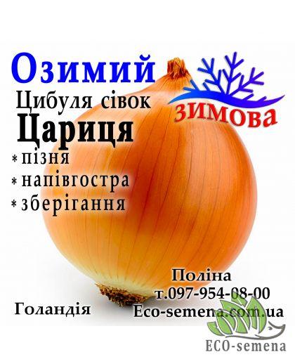 Лук-севок озимый Царица (Caryca), Голландия, 1 кг