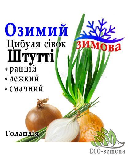 Лук севок озимый Штутти (Stutti) Голландия, 1 кг