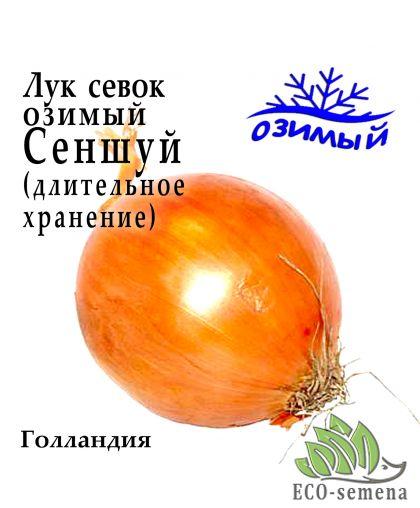 Лук-севок озимый Сеншуй (Senshuy), Голландия, 1 кг