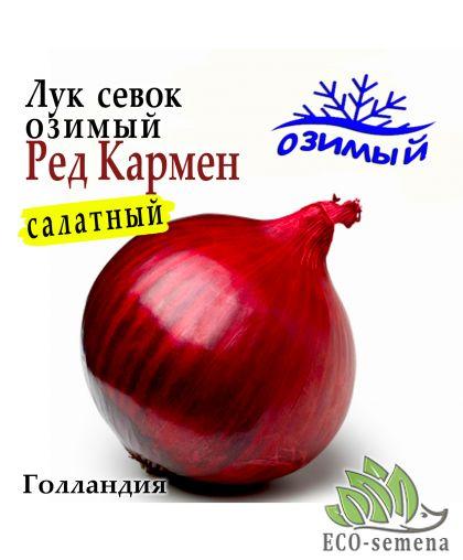 Лук-севок озимый Ред Кармен (Red Karmen), Голландия, 1 кг
