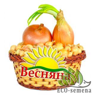 ЛУК-СЕВОК ВЕСЕННИЙ