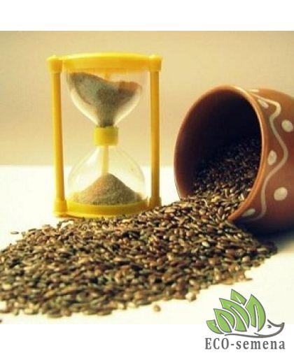 Сроки и масса хранения семян