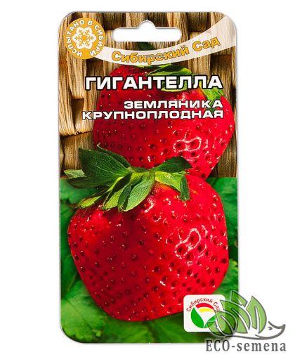 Сибирский сад. Семена земляника (клубника) Гигантелла, 10 сем