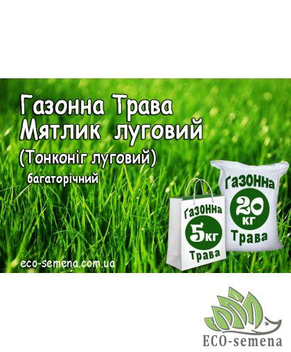 Семена Газонная трава Мятлик луговий (тонконіг луговий), 1 кг
