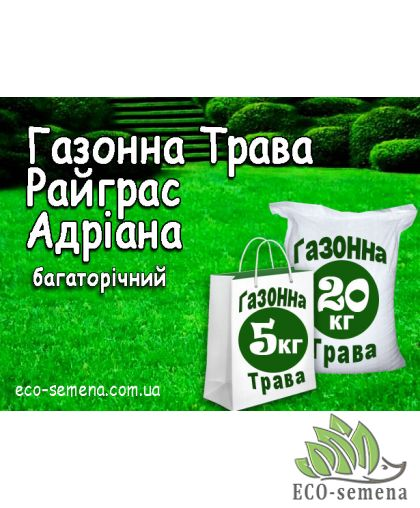 Семена Газонная трава Райграс Адриана, 1 кг