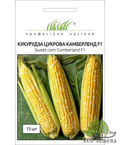 Професійне насіння.. Семена Кукуруза сахарная Камберленд F1, 15 сем