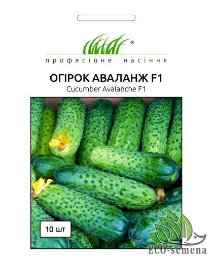 Професійне насіння. Семена огурца Аваланж F1, 10 сем