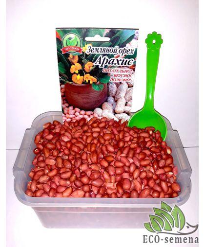 Семена Арахис посадочный Валенсия, 1 кг