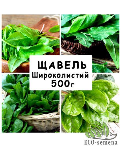 Семена Щавель Широколистный, 500 г