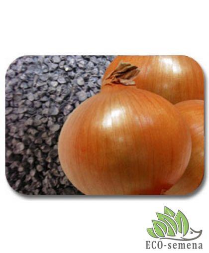 Семена Лук Халцедон, чернушка , 1 кг