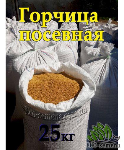 Семена Горчица Желтая, сидерат, От 1000 кг
