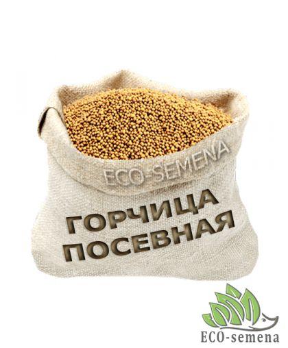 Семена Горчица Белая, мешок 10 кг