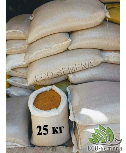 Семена Горчица Желтая, сидерат, Мешок 25 кг