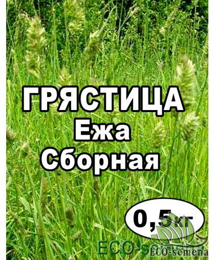 Семена Грястица (Ежа сборная), пакет 0,5 кг