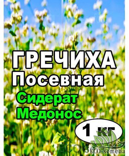 Семена Гречиха (Гречка), посевная, на развес