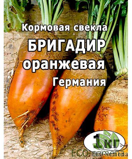 Семена Свекла кормовая Бригадир, Германия / 1 кг на развес