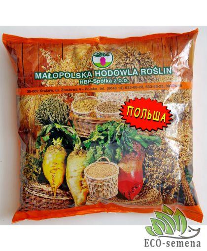 Семена Свекла кормовая Урсус Поли (Желтая), Польша ФП, 500 г