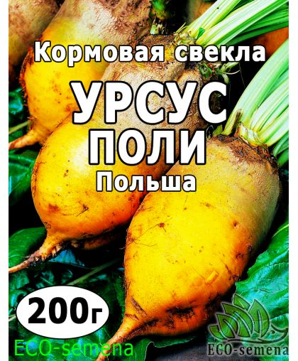 Семена Свекла кормовая Урсус Поли (Желтая), Польша, 200 г