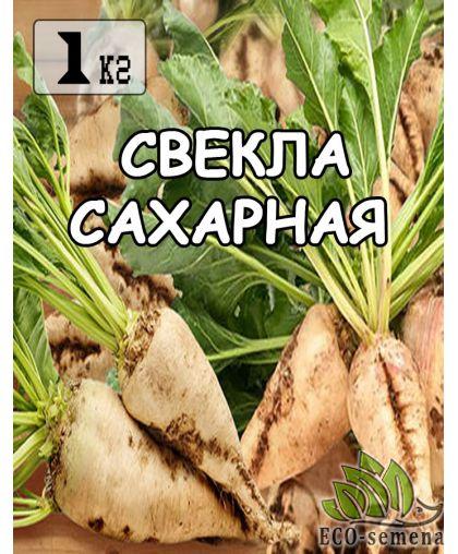 Семена Свекла Сахарная (белая), Украина, 1 кг