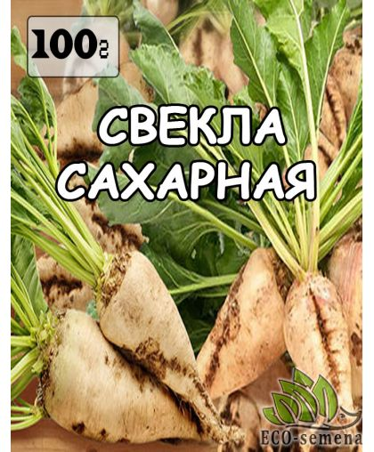 Семена Свекла Сахарная (белая), Украина, 100 г
