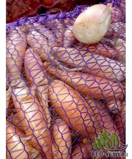 Лук севок Шалот Банановый, Украина, 1 кг