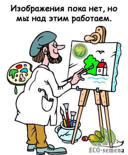 Семена Капуста Брокколи Витаминная,0,5 г